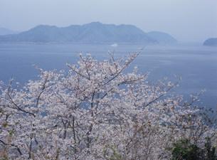 瀬戸内海を望むの写真素材 [FYI03319672]