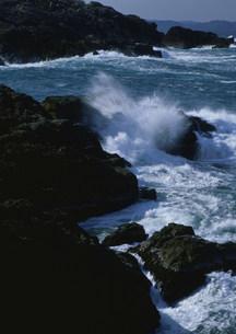 岩礁の海 荒磯海岸の写真素材 [FYI03319722]