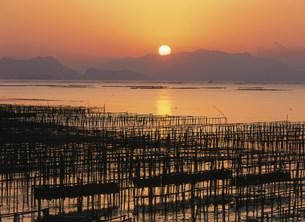 瀬戸内海の朝 かき座の写真素材 [FYI03319727]