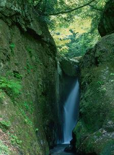 八重滝の渓谷の写真素材 [FYI03319772]