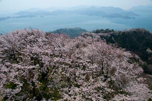 積善山展望台より瀬戸内海を望むの写真素材 [FYI03319807]