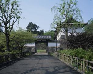 清水門 北の丸公園の写真素材 [FYI03319834]