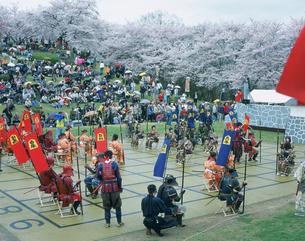 人間将棋 天童桜祭の写真素材 [FYI03319899]