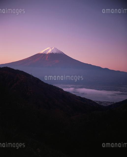 御坂峠より望む朝焼けの富士の写真素材 [FYI03319919]