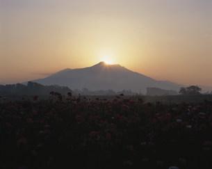 筑波山の日の出の写真素材 [FYI03319939]
