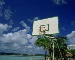 バスケットボードの写真素材 [FYI03319975]