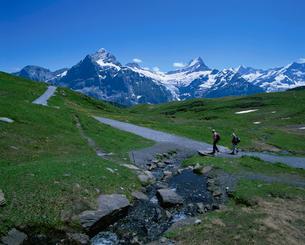フィルストからバッハゼーへのハイキングコースを行くハイカーの写真素材 [FYI03321248]