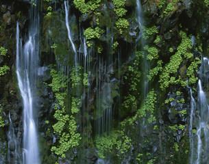 幕滝の写真素材 [FYI03324330]
