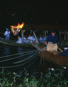 鵜飼 長良川の写真素材 [FYI03329297]
