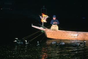 長良川の鵜飼の写真素材 [FYI03329306]
