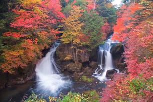 秋の竜頭ノ滝の写真素材 [FYI03330646]