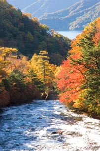 秋の竜頭ノ滝の写真素材 [FYI03330650]