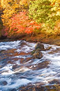 秋の竜頭ノ滝の写真素材 [FYI03330651]