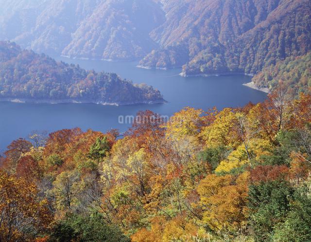秋の田子倉湖の写真素材 [FYI03331308]