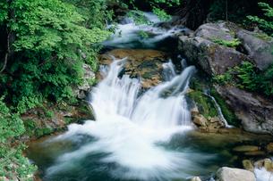 翡翠の滝 照葉峡の写真素材 [FYI03332341]