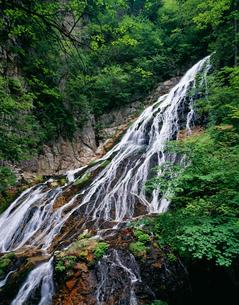 小倉の滝 四万の写真素材 [FYI03332360]