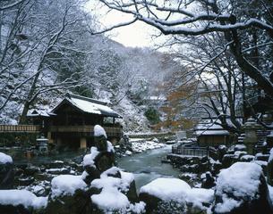 冬の宝川温泉      11月の写真素材 [FYI03332627]