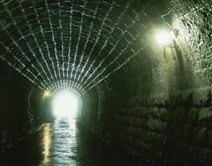 天城峠の旧トンネルの写真素材 [FYI03332937]