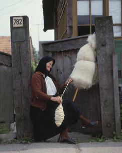 糸を紡ぐ人々の写真素材 [FYI03333470]
