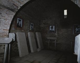 ドラキュラのモデル ヴラド公の ルーマニアの写真素材 [FYI03333534]