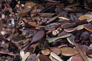 アウシュヴィッツ犠牲者のブラシの写真素材 [FYI03335189]