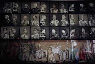 アウシュヴィッツ収容者の写真の写真素材 [FYI03335195]