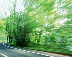 緑の森を走る 十和田の写真素材 [FYI03335475]