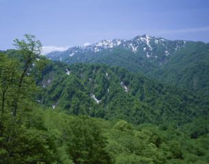 双耳峰と向白神岳 白神山地の写真素材 [FYI03335649]