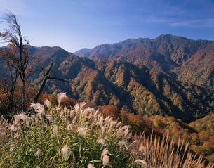 白神山地 双耳峰と向白神岳の写真素材 [FYI03335672]