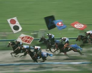 相馬野馬追い祭 甲冑競馬の写真素材 [FYI03335818]