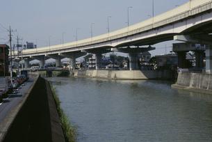 綾瀬川の写真素材 [FYI03337616]