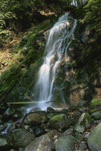 白瀧の滝 横瀧の写真素材 [FYI03338096]