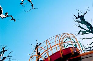 青空と剪定された公園の木立と赤い滑り台の写真素材 [FYI03338881]