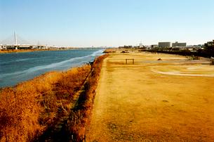 冬枯れた中川放水路、八広側河川敷グランドの写真素材 [FYI03338882]