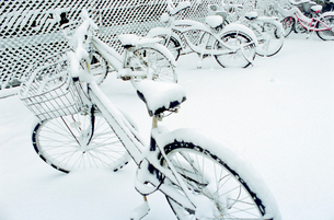 新雪に埋まる自転車置き場の写真素材 [FYI03338890]