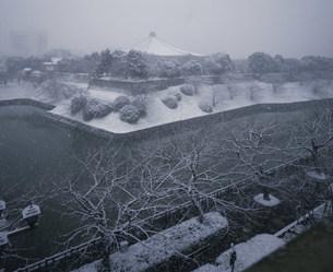 雪の千鳥が渕と武道館の写真素材 [FYI03339363]