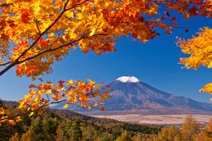 二十曲峠より紅葉の木立に囲まれた富士山の写真素材 [FYI03339456]