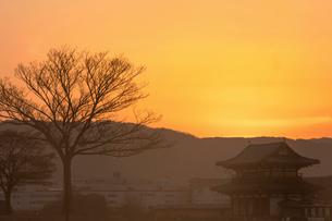 平城宮跡の朝の写真素材 [FYI03340062]