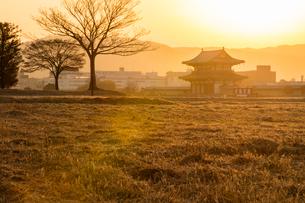 平城宮跡の朝の写真素材 [FYI03340069]