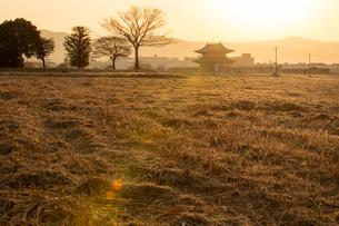 平城宮跡の朝の写真素材 [FYI03340078]