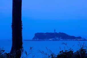 江の島の写真素材 [FYI03340081]