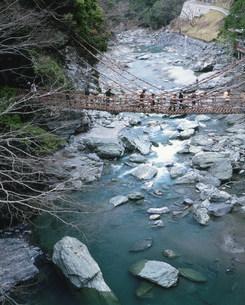 かずら橋の写真素材 [FYI03341560]