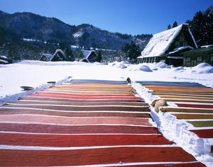 白川郷 染物雪さらしの写真素材 [FYI03341569]
