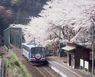 樽見鉄道 日当駅の写真素材 [FYI03341580]