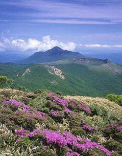ミヤマキリシマ咲く韓国岳より高千穂連峰の写真素材 [FYI03341610]