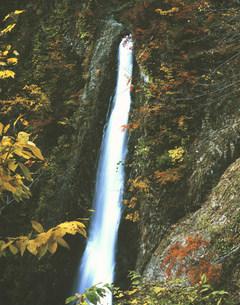 白神山地暗門の滝の写真素材 [FYI03341641]