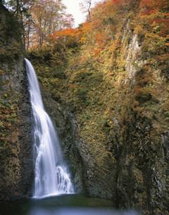 白神山地暗門の滝の写真素材 [FYI03341645]