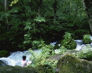 奥入瀬渓流と写生人の写真素材 [FYI03341761]