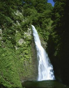 白神山地 暗門の滝(第一の滝)の写真素材 [FYI03341859]