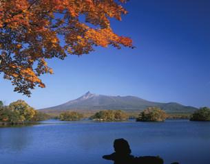 大沼高原と駒ヶ岳の写真素材 [FYI03341871]